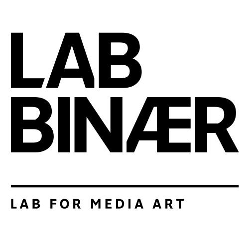Sponsor lab binaer